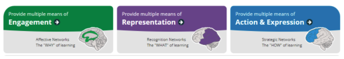 """Engagement: The """"Why"""" of Learning; Image of Representation: The """"What"""" of Learning; Image of Action & Expression: The """"How"""" of learning."""
